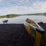 first canoe trip for Harvey